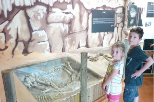 musee-grotte-foissac-squelette